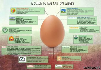 Image of a brown egg with egg carton label information.