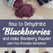 """Blackberries, dehydrated blackberries and blackberry powder on a wooden background with text """"how to Dehydrate Blackberries and make Blackberry Powder"""""""