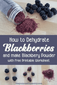 "Blackberries, dehydrated blackberries and blackberry powder on a wooden background with text ""how to Dehydrate Blackberries and make Blackberry Powder"""
