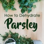 """parsley bunch on a cutting board with text """"How to Dehydrate Parsley by The Purposeful Pantry.com"""""""