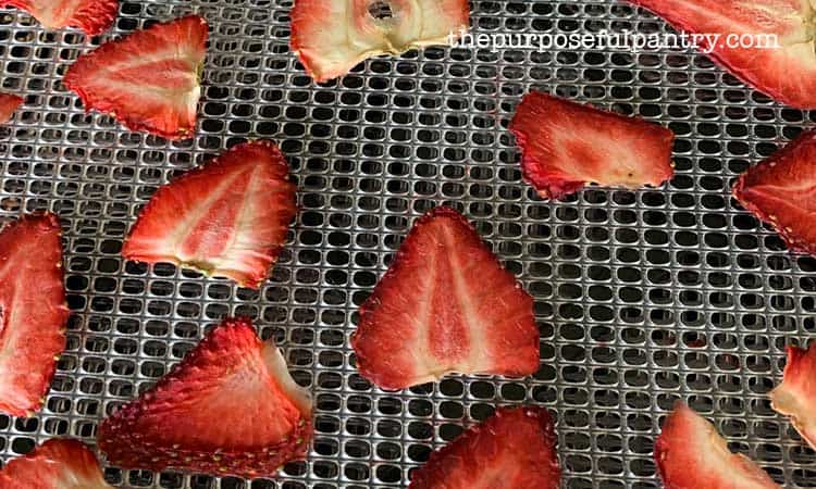 Excalibur dehydrator tray full of dehydrated strawberries