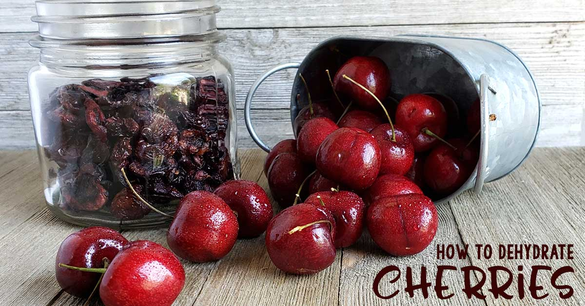 Mason jar of dried cherries, metal container spilling fresh cherries on wooden surface