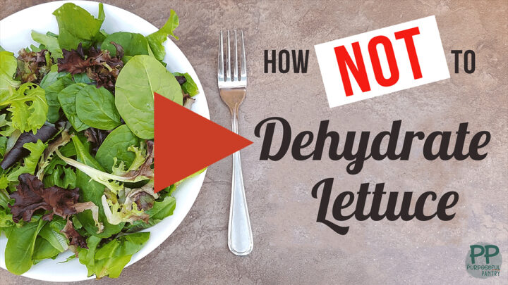 Youtube play button for video on dehydrating lettuce
