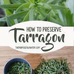 How to Preserve Tarragon