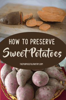 How to Preserve, Dehydrate, Freeze and Store Sweet Potatoes