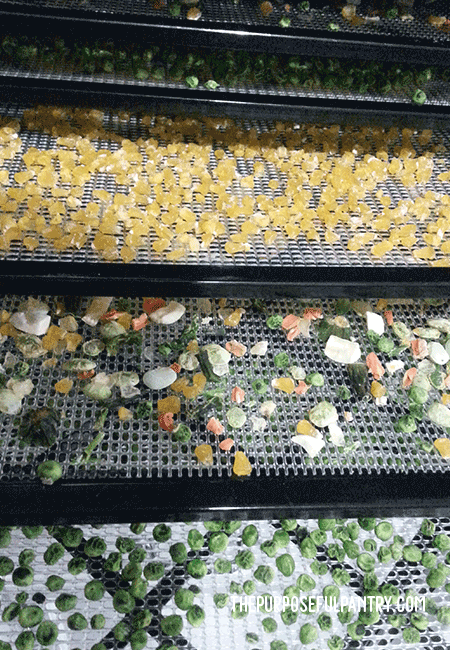 Dehydrate Frozen Vegetables