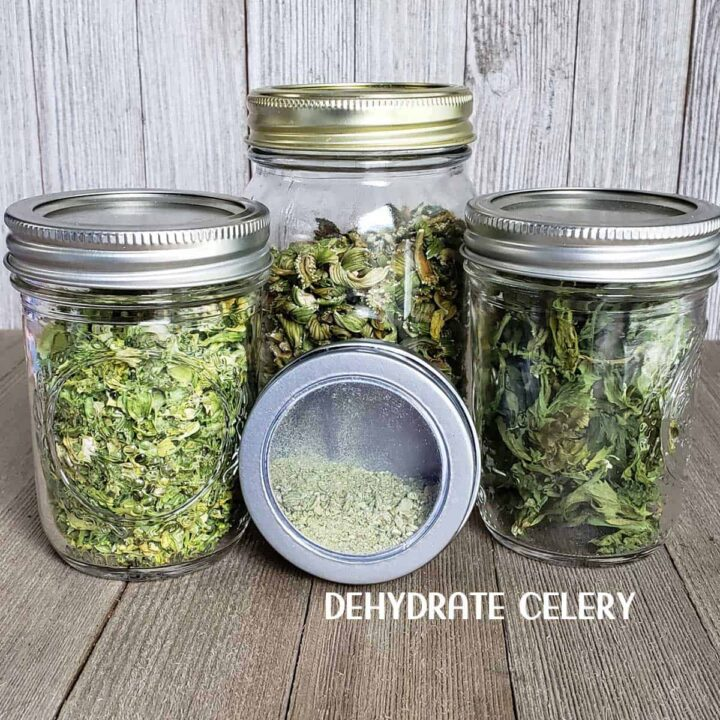dehydrated celery stems leaves and powder in glass mason jars on wooden background