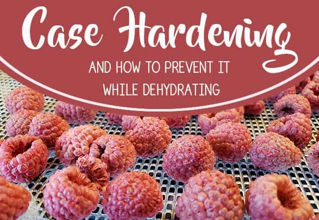 Dehydrating Tips How To Prevent Case Hardening The