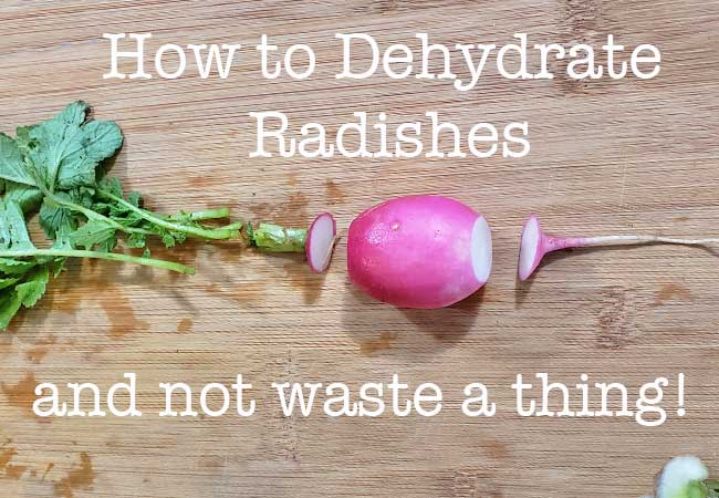Radish plant separated on a cutting board to show how to dehydrate radishes without wasting a piece