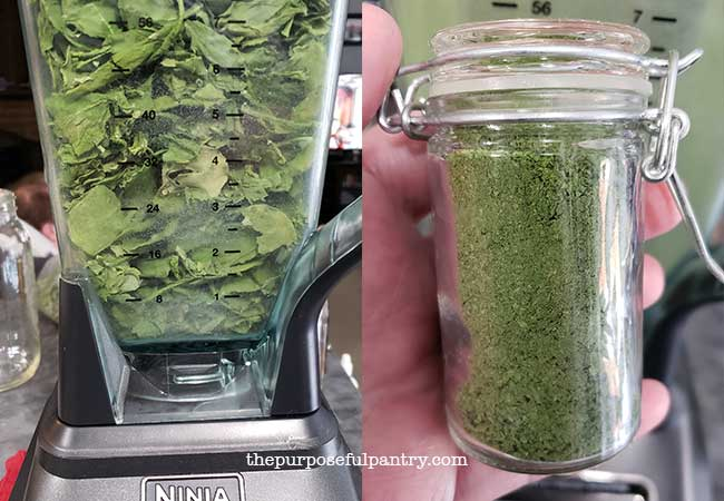 Ninja Blender with dehydrated radish leaves and container of ground radish leaf powder