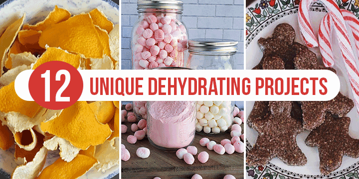 12 dehydrating projects from dehydrated marshmallows to venison jerky