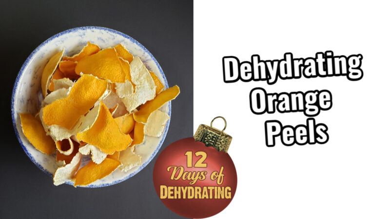 Bowlful of Dehydrated orange peels for creating potpourri and fire starters