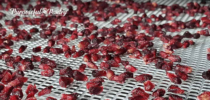 Pomegranate arils on Excalibur dehydrator tray