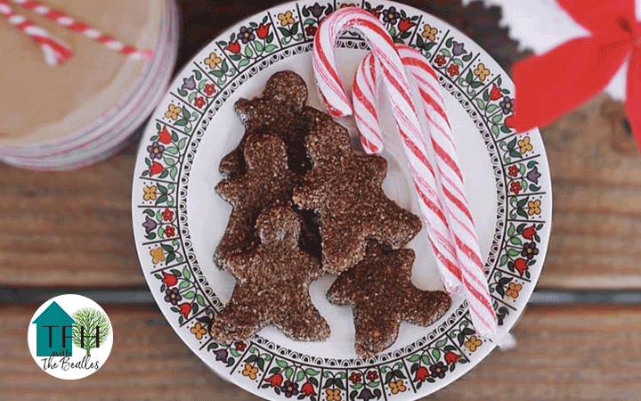 Plate on kitchen table with candycanes and raw, vegan, gingerbread cookies made in the dehydrator.