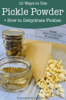 Dehdyrated pickles, Pickle Powder & Popcorn in a parchment paper cup