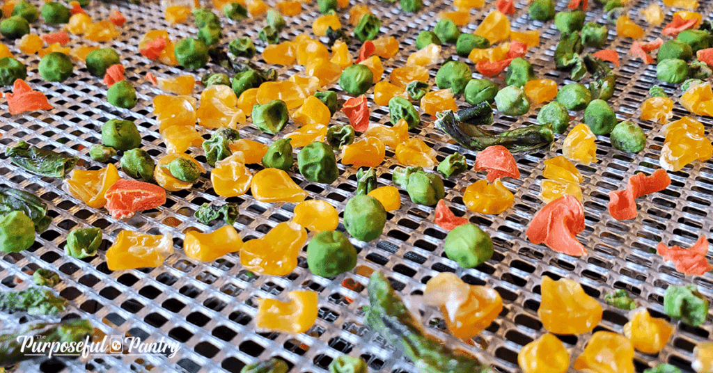 Dried vegetables on Excalibur dehydrator mesh tray