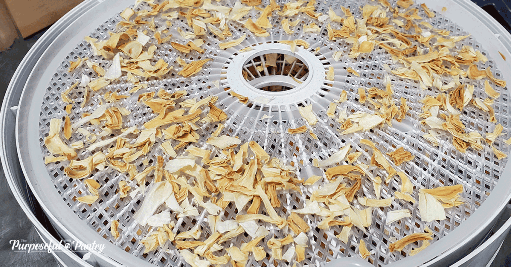 Nesco dehydrator tray with finished dried onions.