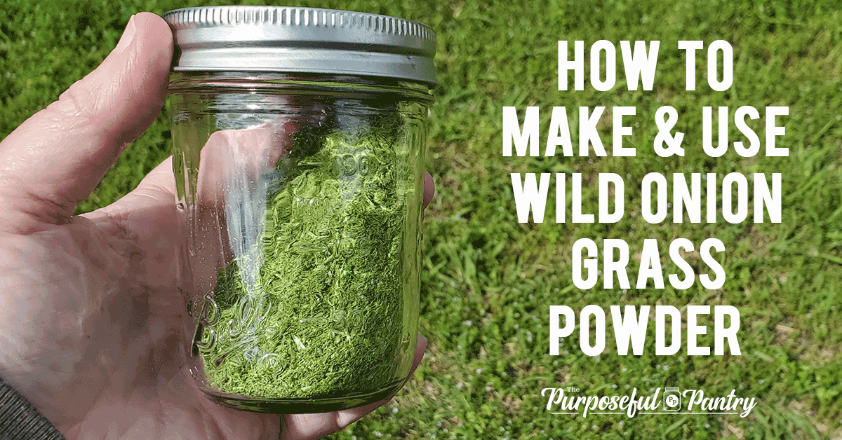 "Jar of dehydrated & powdered wild onion grass with caption ""How to Make & Use Wild Onion Grass Powder"""