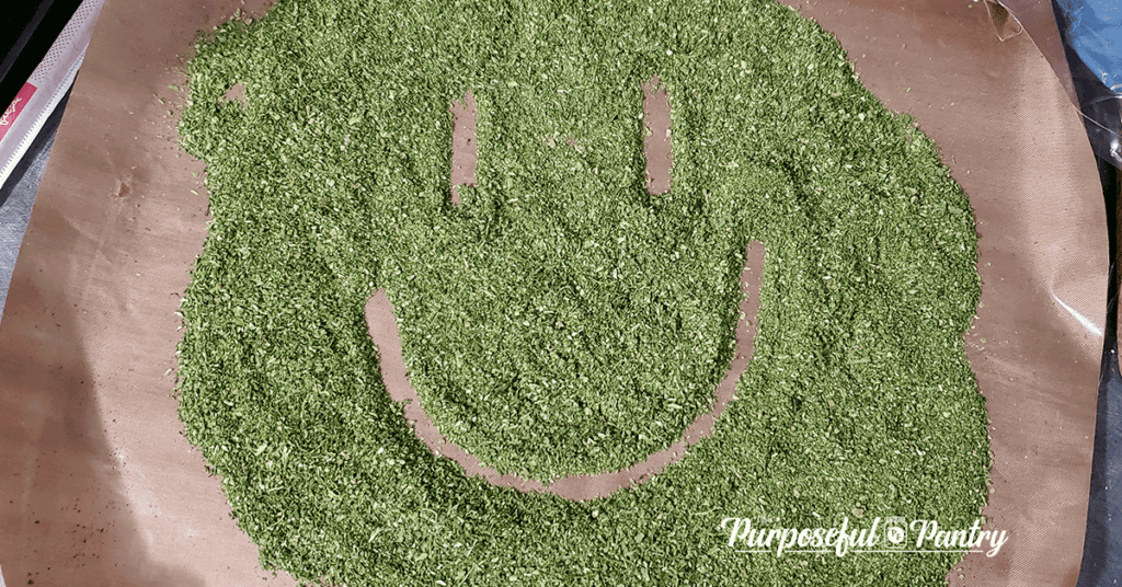 Excalibur Dehydrator Fruit Leather Tray with dehydrated & powdered wild onion grass with a smiley face drawn in it.