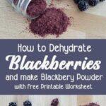 Jar of blackberry powder spilled on tabletop with fresh blackberries