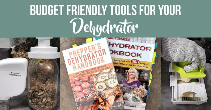 Dehydrating tools: Cookbooks, vacuums sealers, mandoline