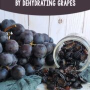 Fresh grapes and a mason jar of dehydrated grapes (raisins) on a wooden surface