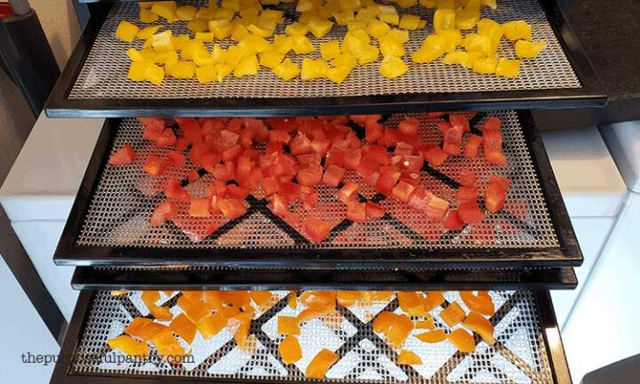 Diced yellow, red and orange bell peppers being dehydrated on Excalibur Dehydrator trays.