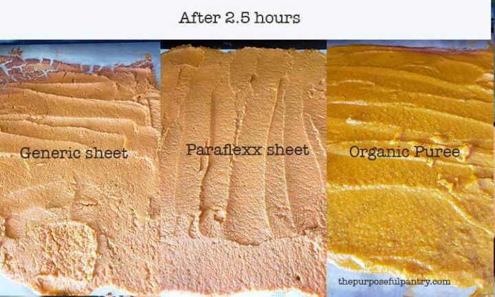 Showing difference of pumpkin puree on different fruit leather sheets