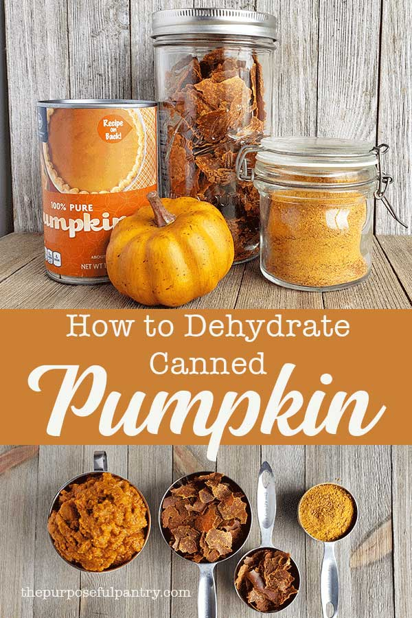 Pinterest image for dehydrated canned pumpkin puree