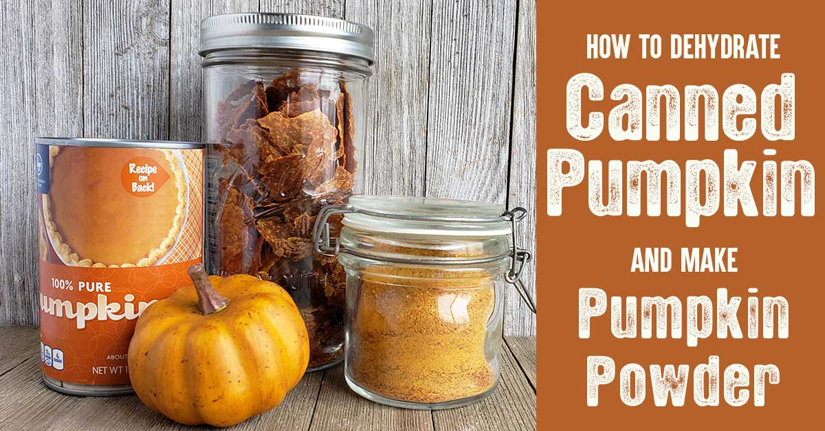 Canned pumpkin, pumpkin leather and pumpkin powder on wooden backdrop