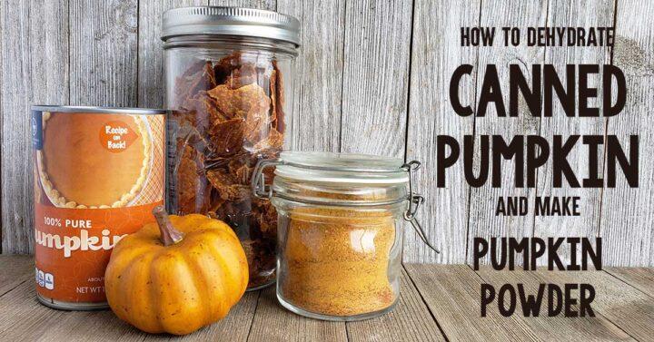 Canned pumpkin, pumpkin leather and pumpkin powder on wooden backdrop