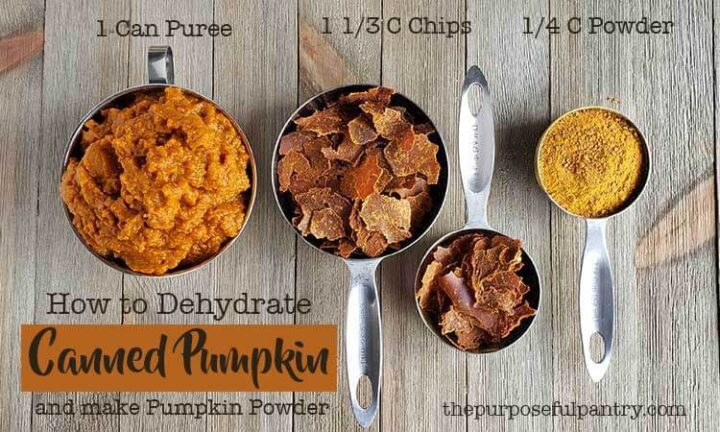 Dehydrated Pumpkin Conversion chart with measuring spoons of pumpkin and pumpkin powder