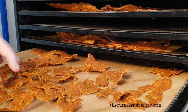 Pumpkin leather chips on Excalibur Dehydrator trays