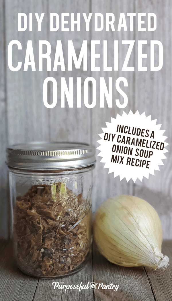 Mason jar full of dehydrated minced caramel onions and a fresh onion on wooden background