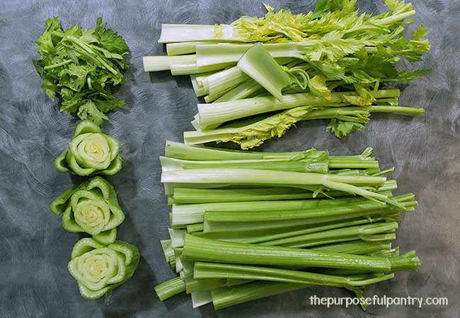 Parts of celery laid out explaining what can and cannot be dehydrated