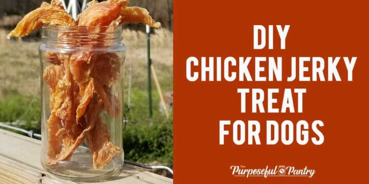 Chicken jerky treats for dogs in a mason jar on a fence post