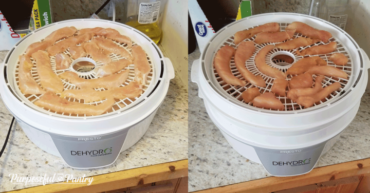raw chicken in two stages dehydrating on a presto dehydrator