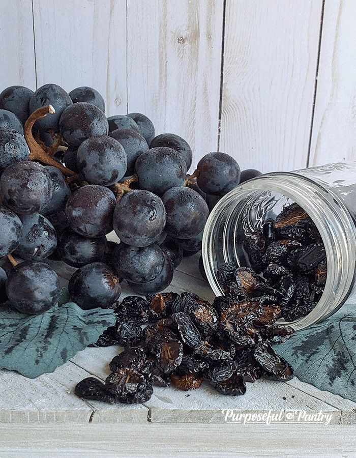 Fresh grapes next to a jar of dehydrated grapes made into raisins by dehydrating