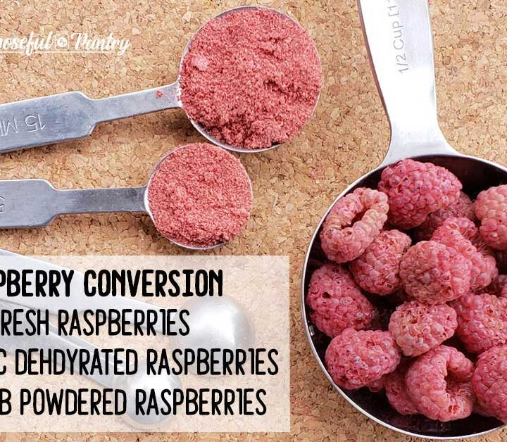 Dehydrate raspberries conversion chart - raspberries in measuring spons