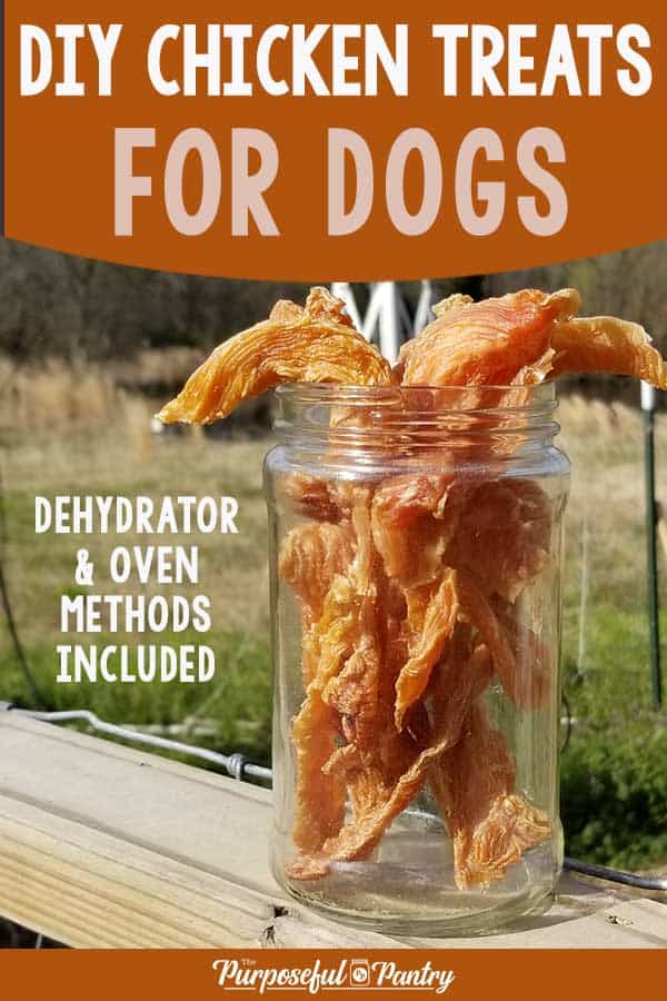 Chicken Jerky for Dogs in a mason jar on a wooden fence ledge