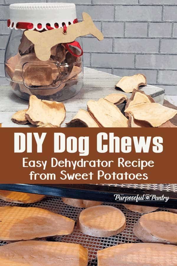 A canister of dog chews and dog chews on a wooden surface, additional chews on an Excalibur dehydrator tray