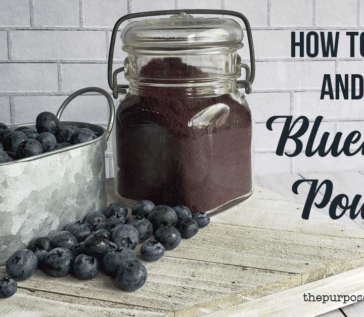 Fresh blueberries in a metal bowl with jar of powdered blueberries all on a wooden background.