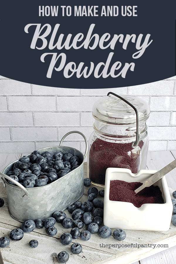 Fresh blueberries in a metal serving dish, a white serving dish and a glass jar both full of dehydrated blueberry powder