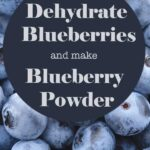 """Fresh Blueberries as as a background photo for text of """"How to Dehdydrate Blueberries and make blueberry powder"""