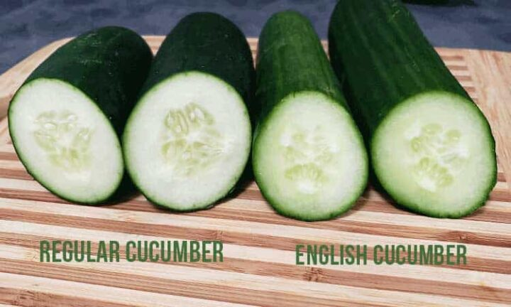 Difference between regular and English cucumbers for dehydrating