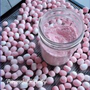 Excalibur dehydrator tray of dehydrated peppermint marshmallows and jar of marshmallow powder