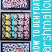 Excalibur dehydrator trays of peppermint, peeps and lucky charms marshmallows