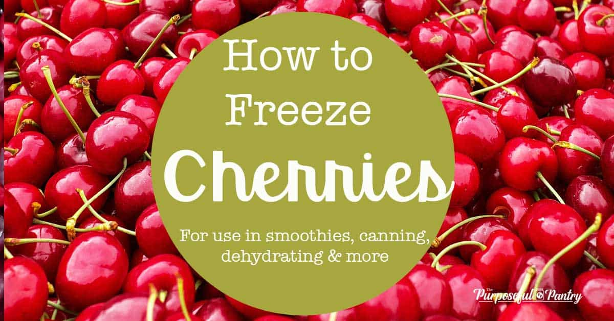 Bunches of cherries before freezing