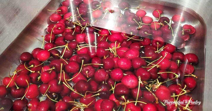 Cherries in a water bath