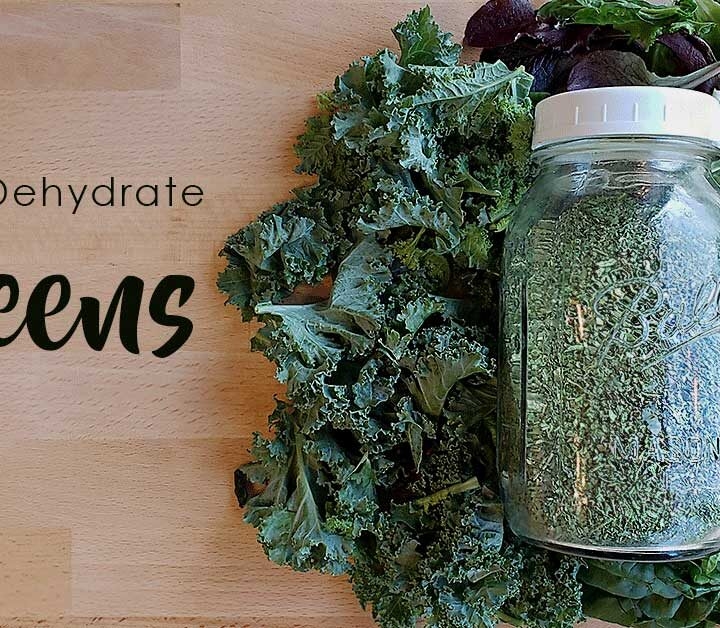 Dehydrated green powder in a large mason jar on a bed of kale, lettuce and spinach